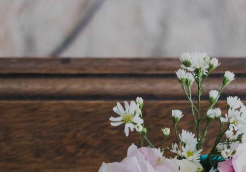 passiflora_begravning_testimonials